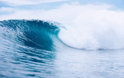 The Ultimate Guide to Surf in the Mentawai